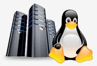 Unlimited Linux Hosting