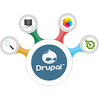 Professional Drupal Website Design